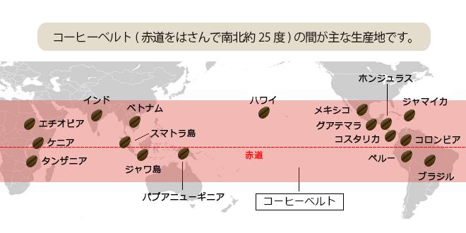 コーヒーベルト(赤道をはさんで南北約25度)の間が主な生産地です。