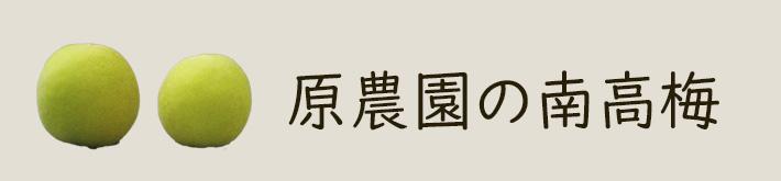 原さんの南高梅の商品ページへ
